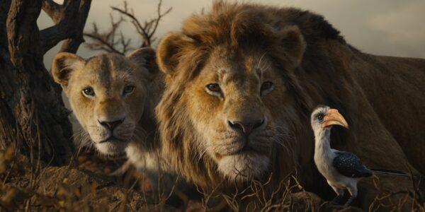 فیلم شیر شاه The Lion King 2019